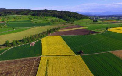 Matthieu Calame : Peut-on avoir une agriculture écologique dans une société qui n'est pas écologique ?